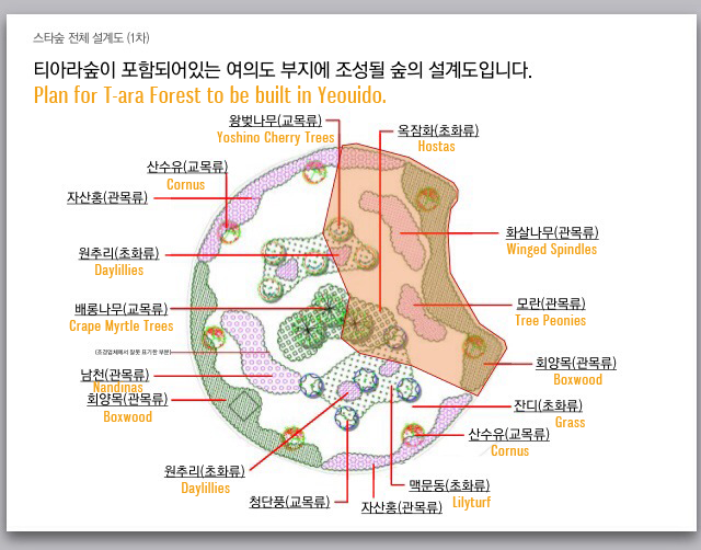 T-ara Forest Plans